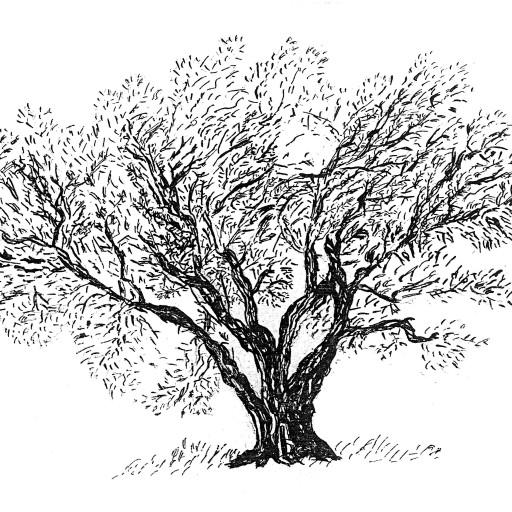 Olivette et Jardin de Langel